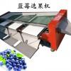 实用新型四级蓝莓分选装盒机